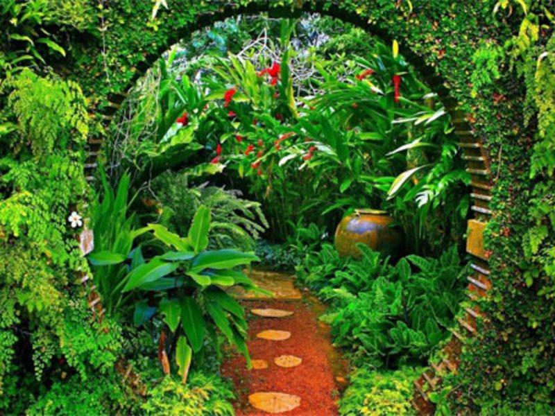 Сад Брифа