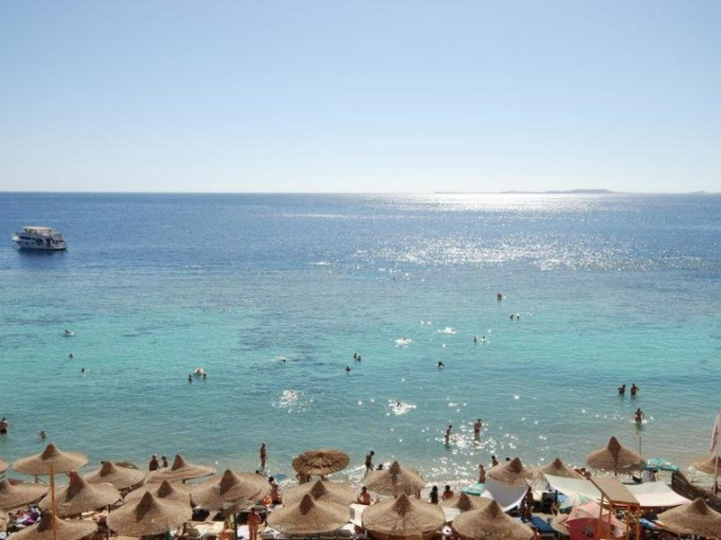 Dive Inn Resort  36474