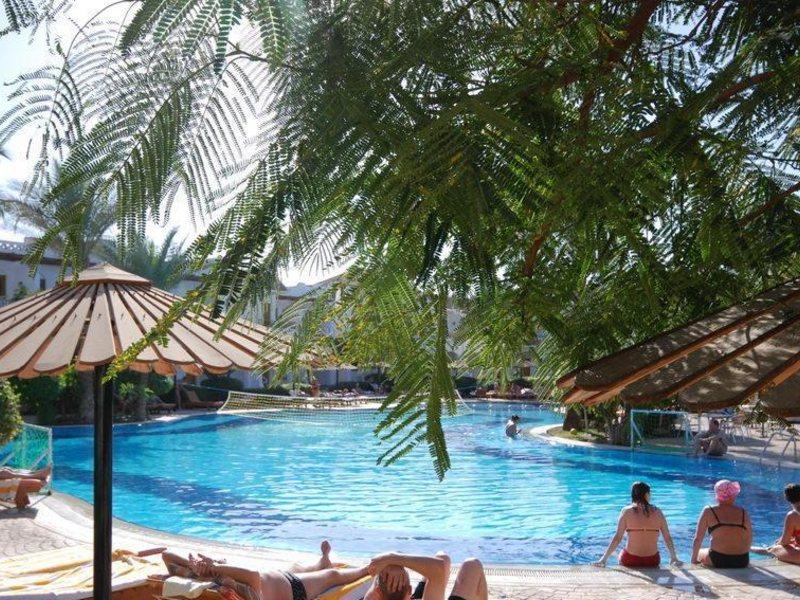 Dive Inn Resort  36476