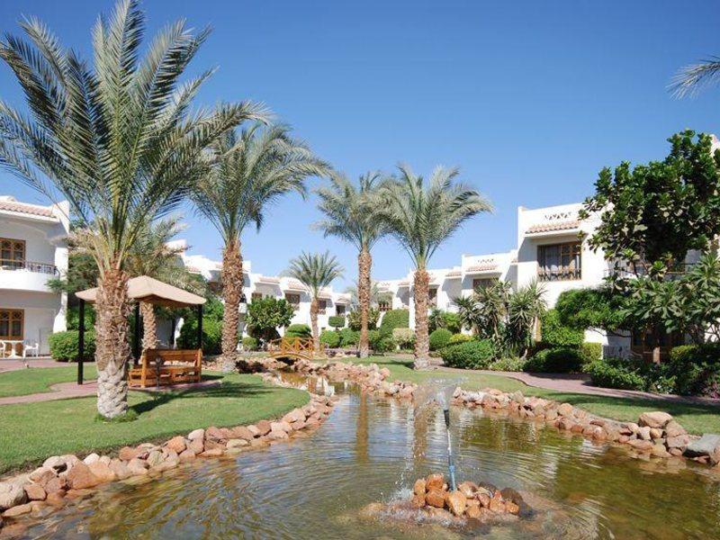 Dive Inn Resort  36487