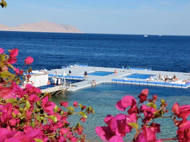 Domina Coral Bay Aquamarin Beach 123173