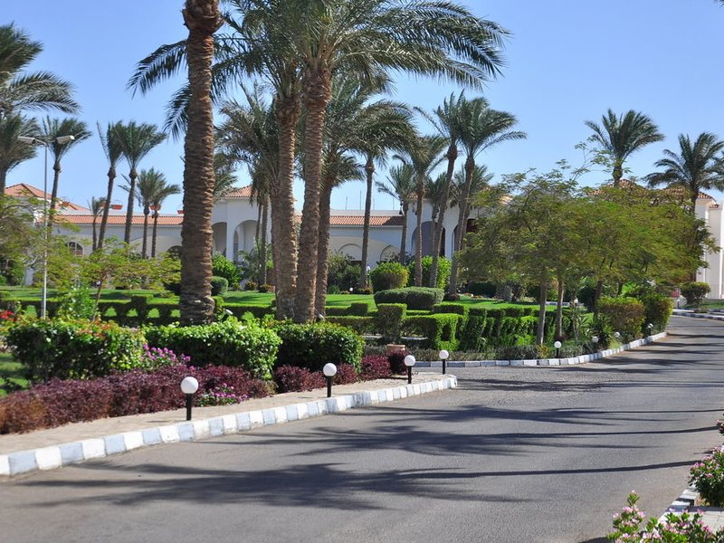Siva Sharm (ex 128415