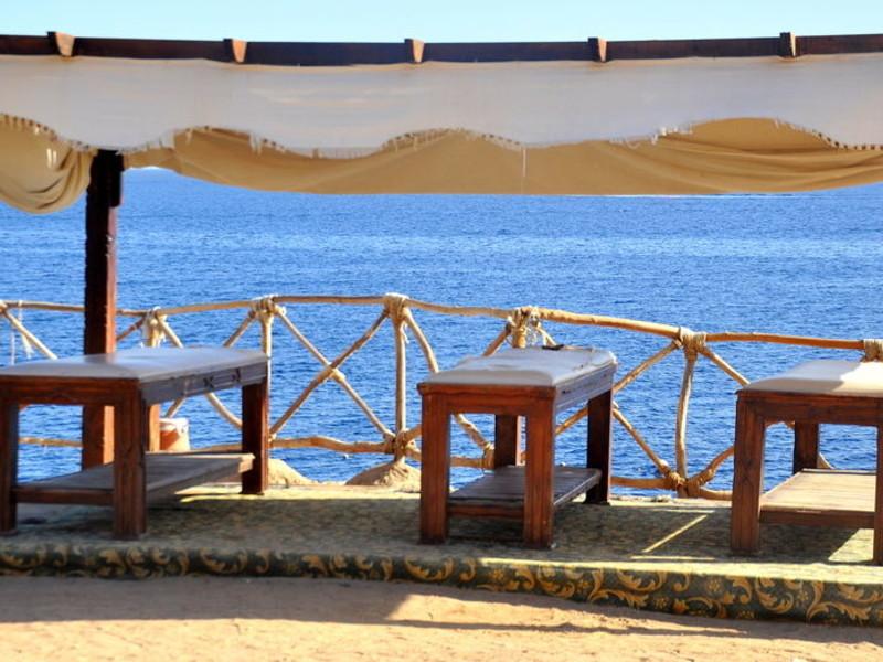 Siva Sharm (ex 128423