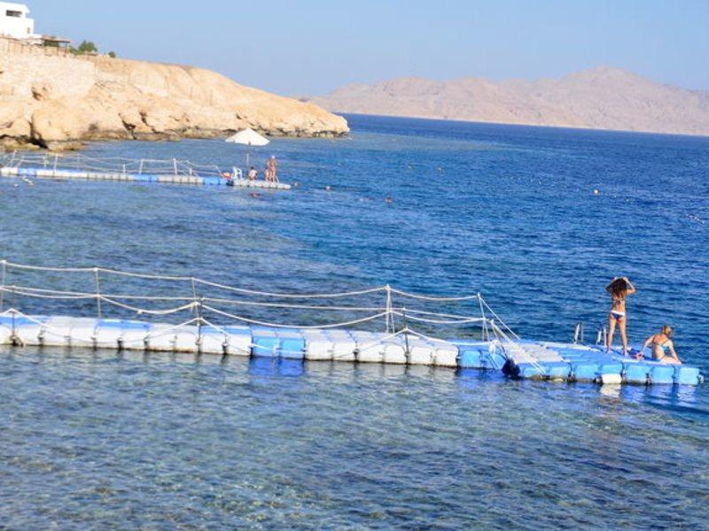 Siva Sharm (ex 128428