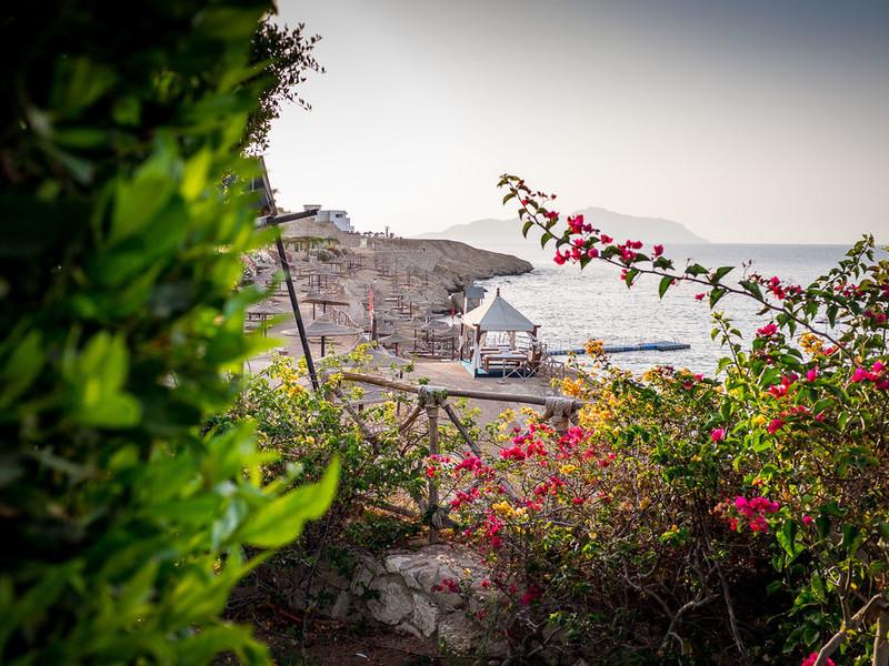 Siva Sharm (ex 128429